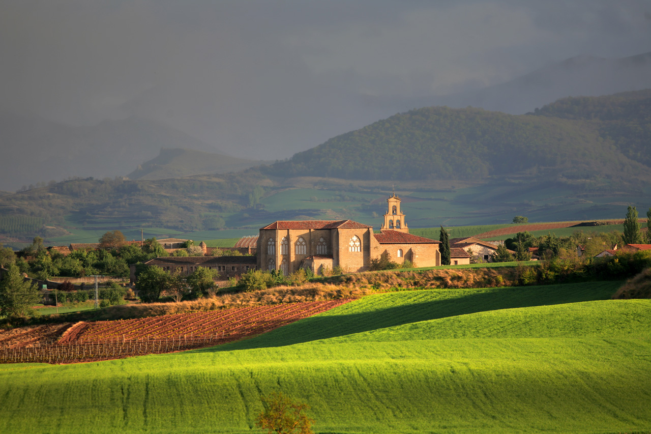 03. Monasterio de Santa María de San Salvador. Cañas